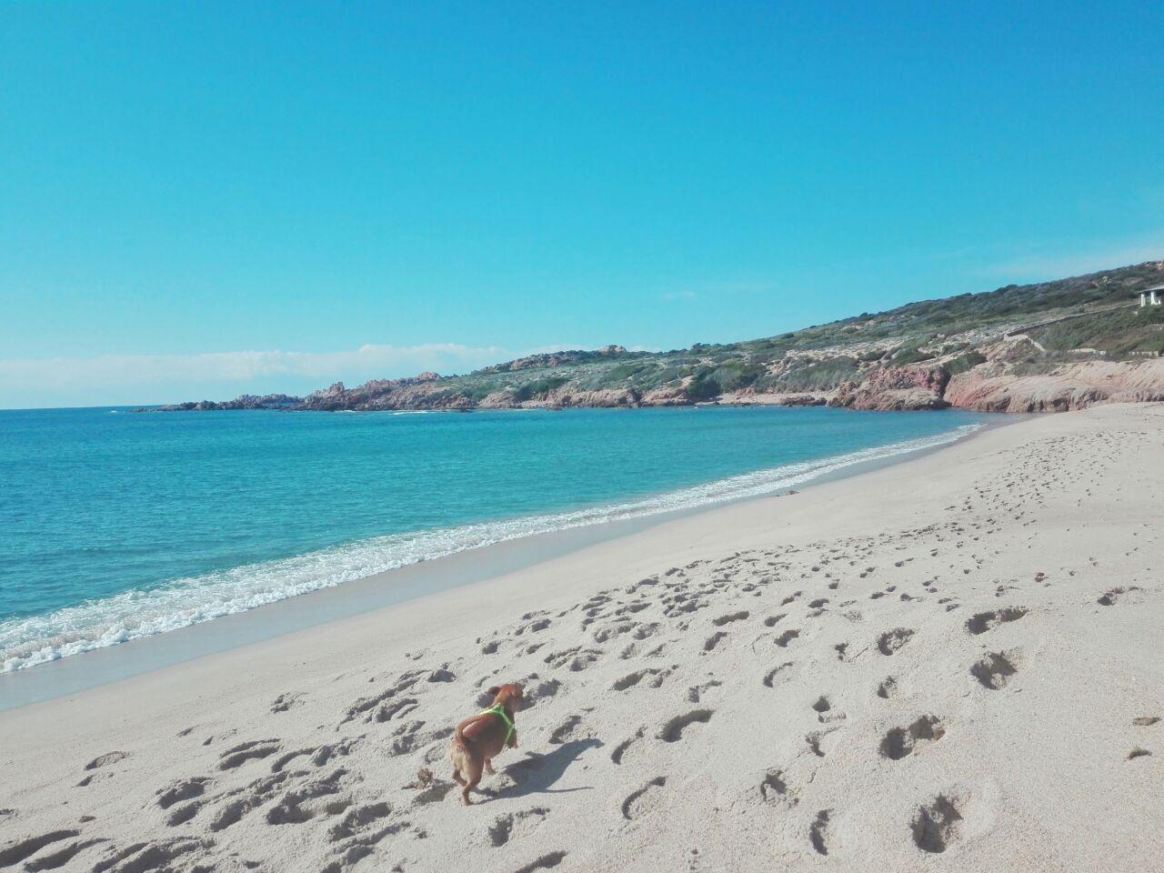 Credenza Per Il Mare : Cosa portare al mare con i bambini e giochi da fare in spiaggia
