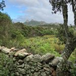 stazzi e trekking